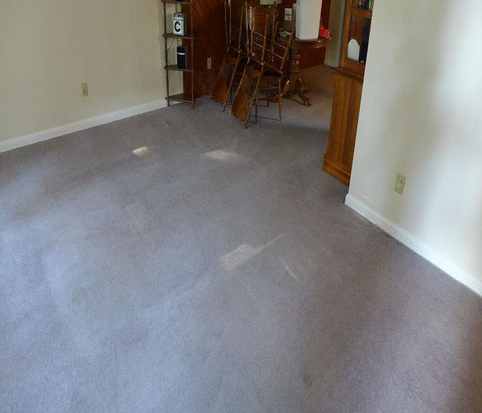 Carpet Cleaning Baltimore Before