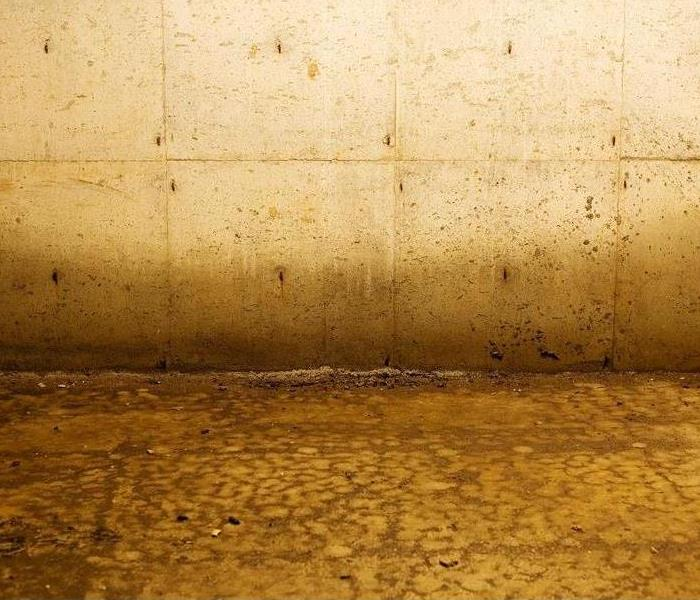 Commercial 4 Tips for Responding to Commercial Water Damage